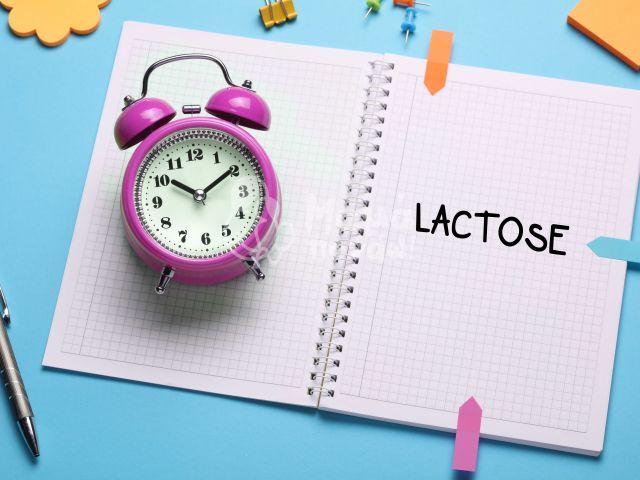Δυσανεξία Στη Λακτόζη-5 Συμβουλές Για Να Απολαύσετε Τα Γαλακτοκομικά