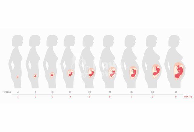 Ημερολόγιο Εγκυμοσύνης: 9η Εβδομάδα