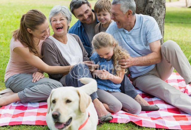 Ανθρώπινες Σχέσεις: Μας Κάνουν Πιο Υγιείς Και Ευτυχισμένους;