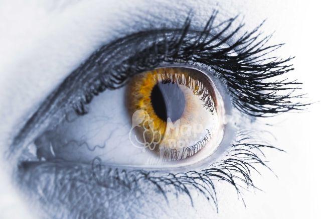 Πως Μπορείτε Να Βελτιώσετε Την Νυχτερινή Σας Όραση